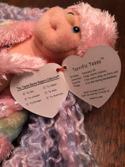 TY Terrific Tessa February 29