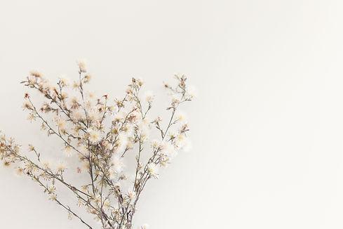 wildflowers resized.jpg