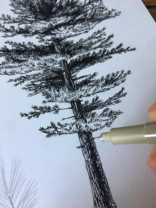Tree Commissions