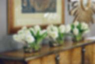 3 hyacinth b.jpg