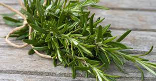 Practical Gardening: Rosemary