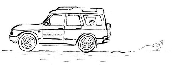 annie drawings car.jpg