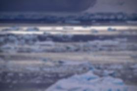 南極 パラダイス湾