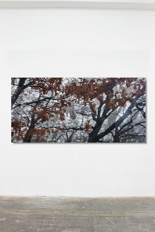 Herbstbild I