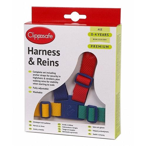 Multi-Colour Harness & Reins