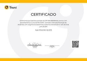 Certificado Treni.png