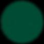 Gov Service Logo.webp