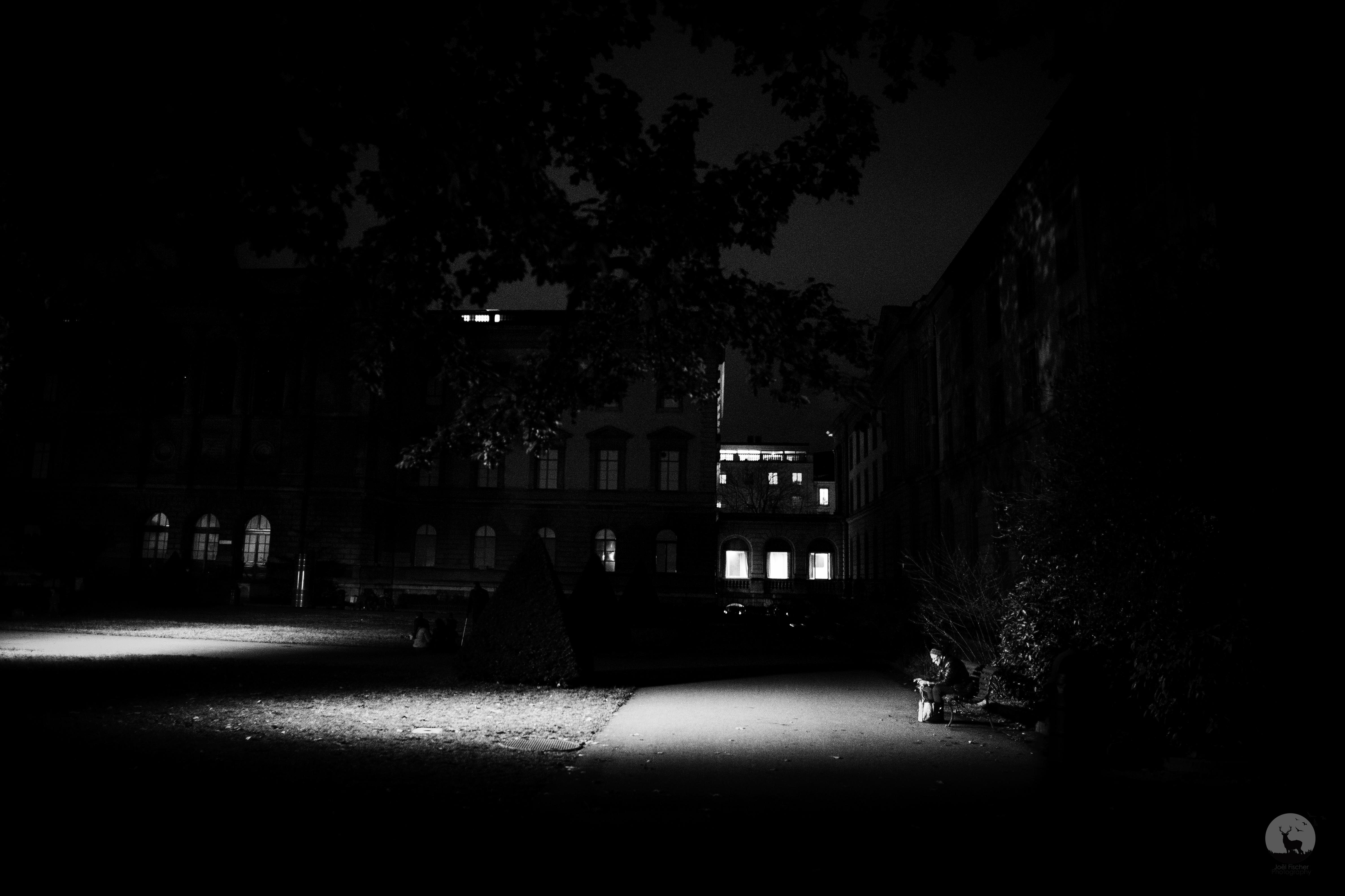 Dans_la_lumière