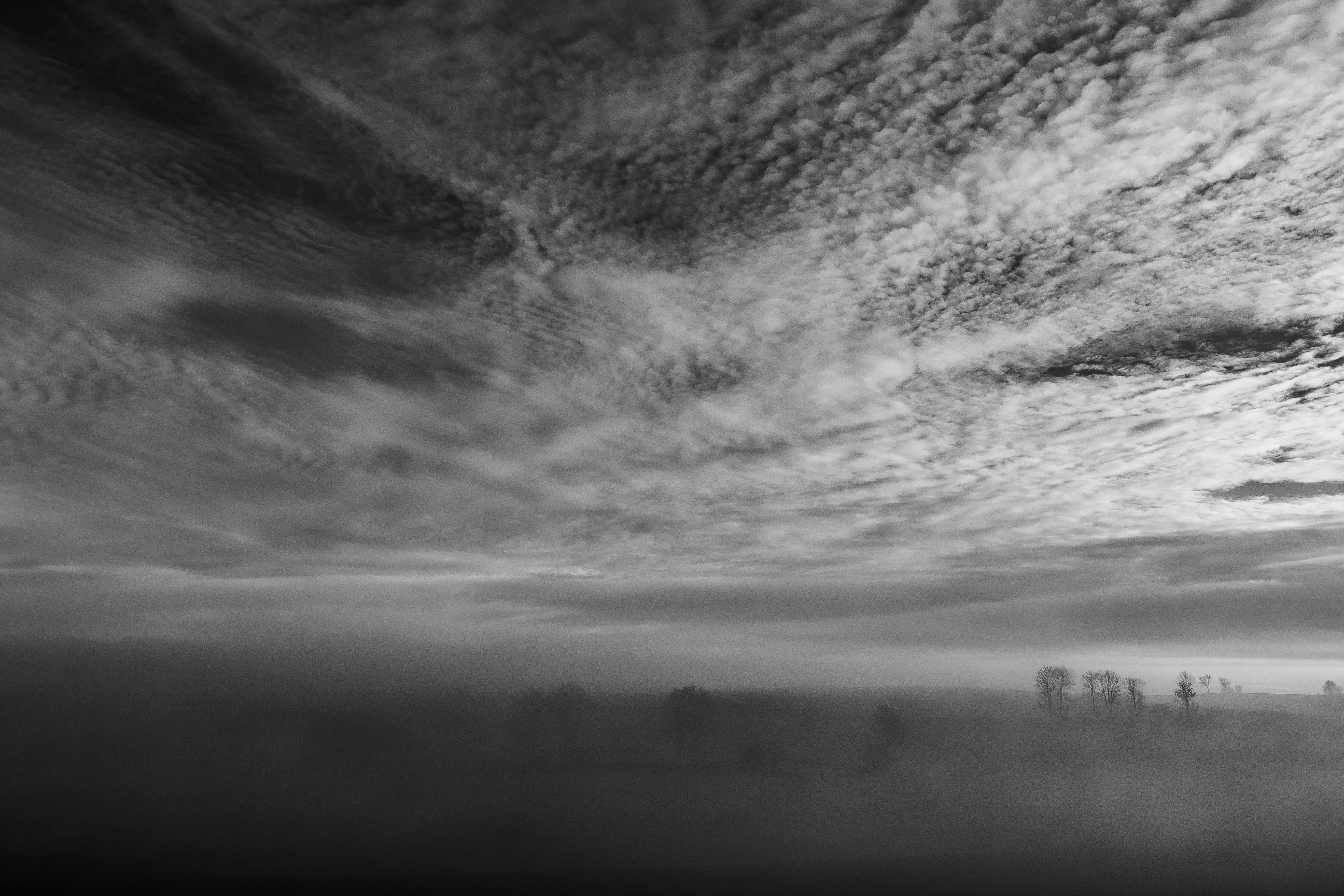 Brouillard sur le Léman