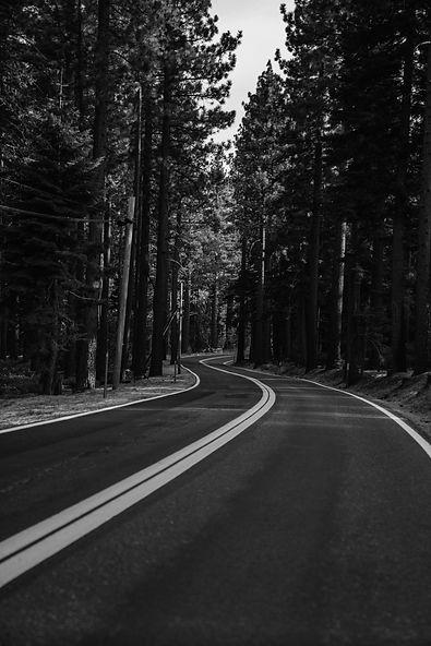 highway in the woods