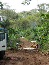 Logging road cut into Wounaan territory.