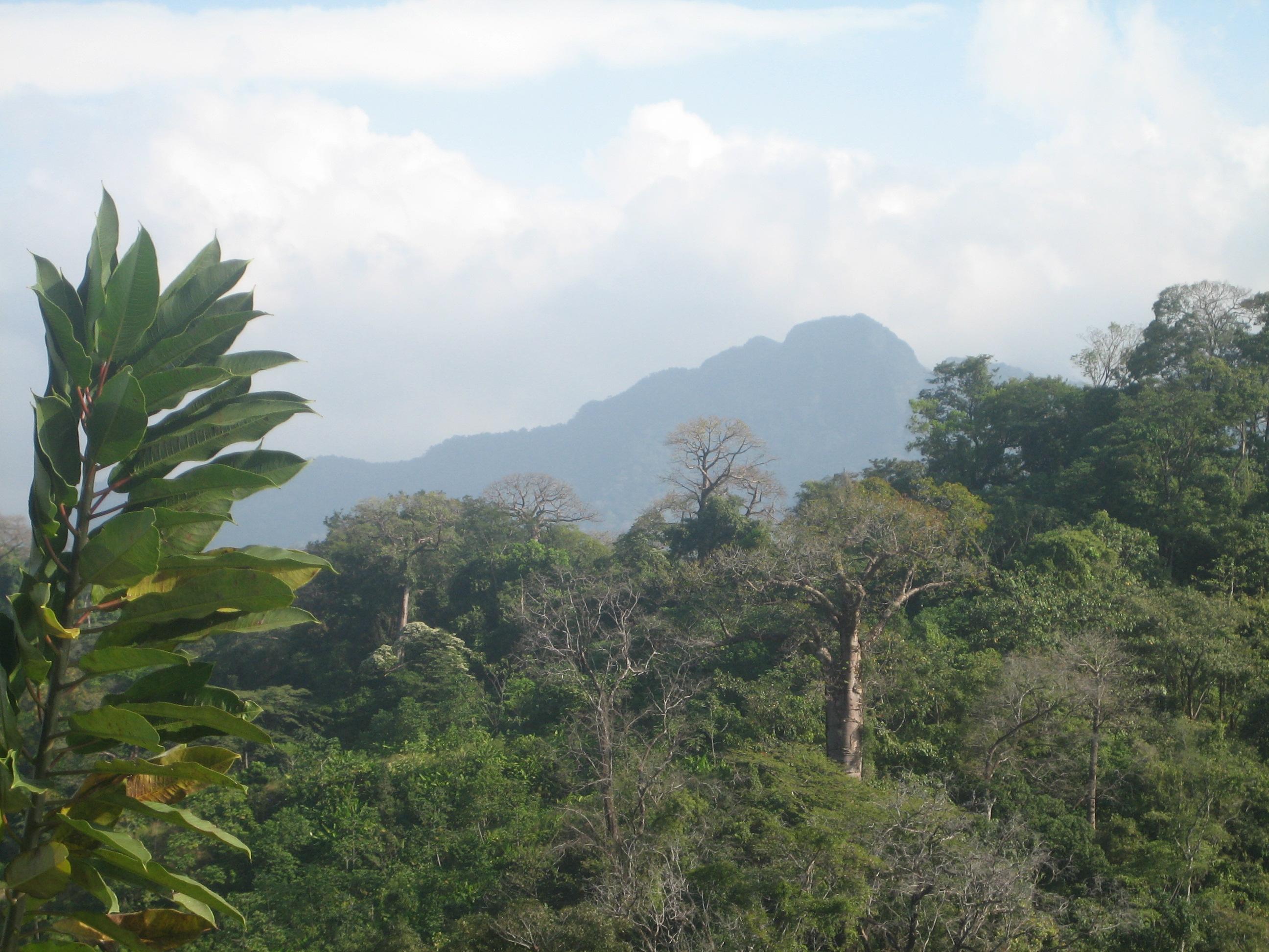Rio Hondo landscape