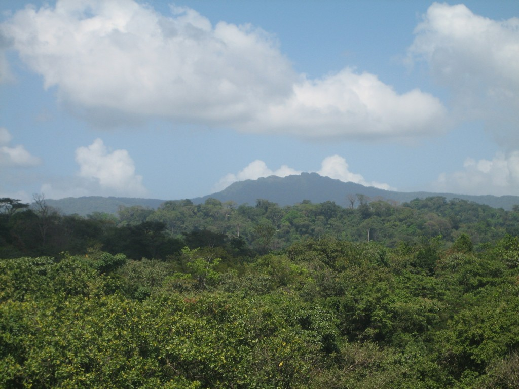 Darien forests and mountains
