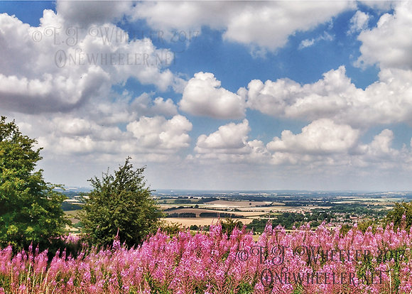Watlington Hill (Greeting Card)
