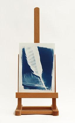 Feathers Cyanotype Print