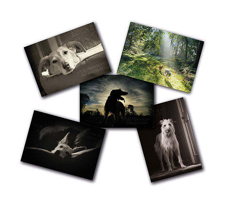 Lurchers 5 pack #2 (Greeting Cards)