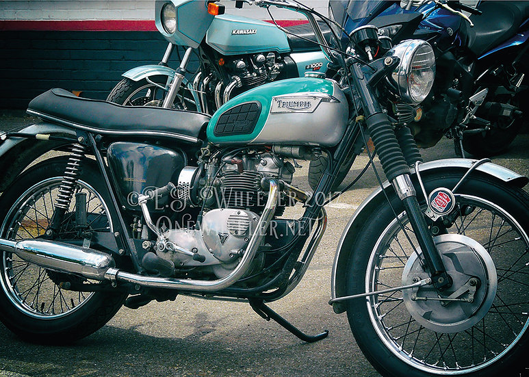 Triumph Motorcycle (Greeting Card)