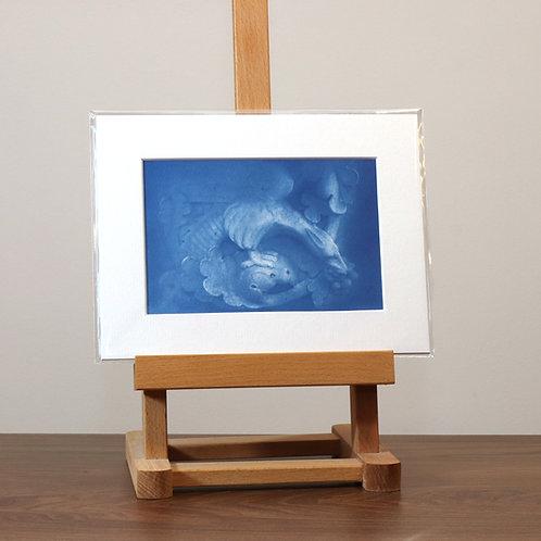 Griffin Cyanotype