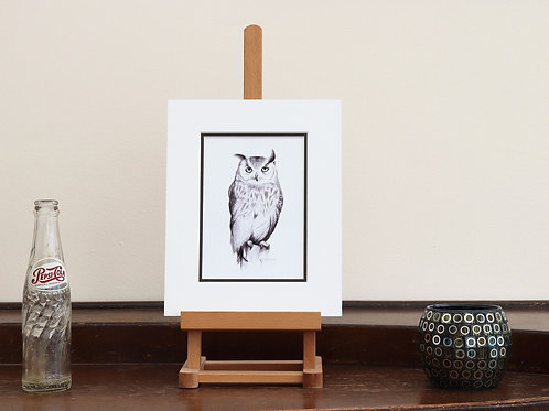 Owl on Canvas (Mounted Print)