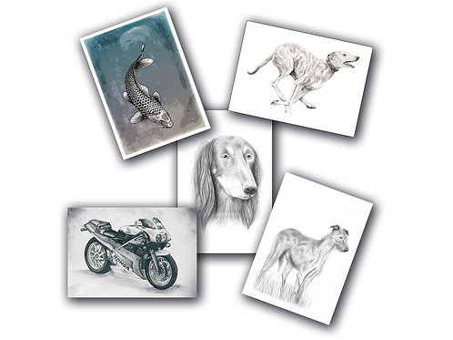 Art 5 pack (Greeting Cards)