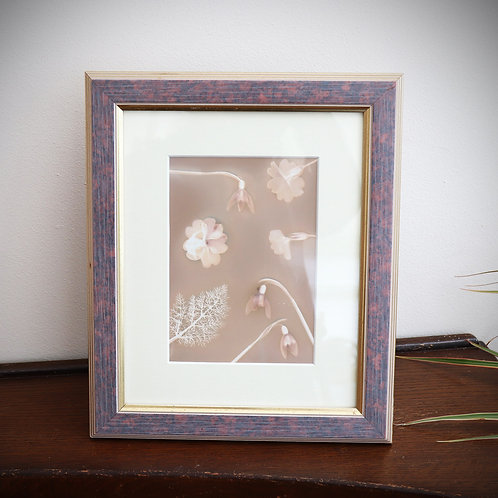 Light Lumen (Framed lumen print)