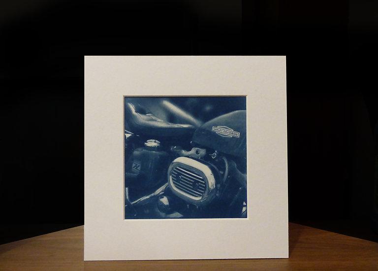 Harley Cyanotype Print