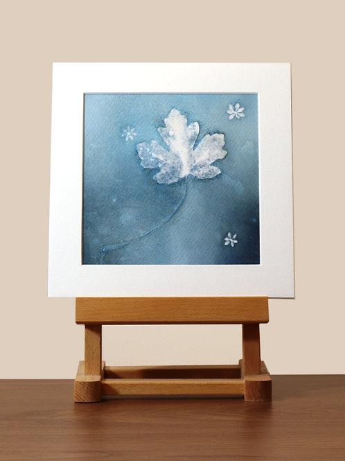 Leaf Mounted Wet Cyanotype Print