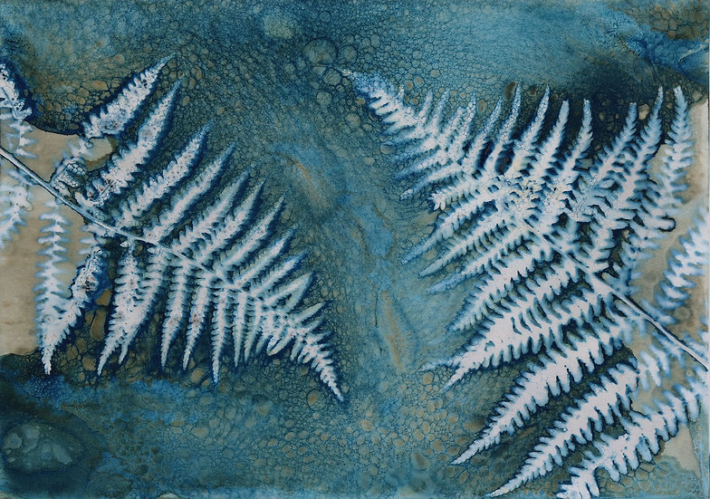 Fern Cyanotype Original by Emma Wheeler
