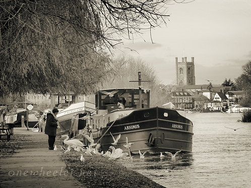 Henley Barges (Greeting Card)