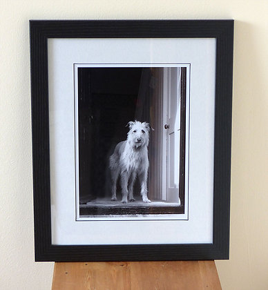 Who's There? (Framed Print)