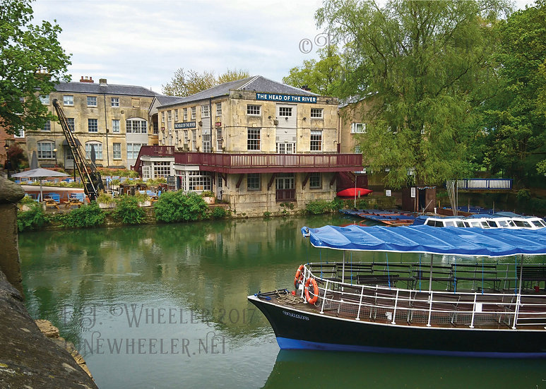 Head of the River, Oxford (Greeting Card)