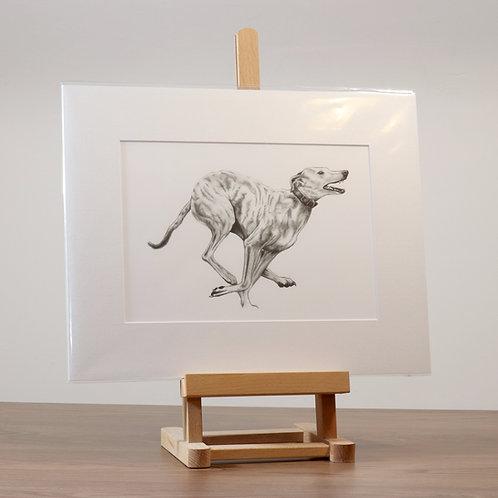 Running Lurcher II mounted print