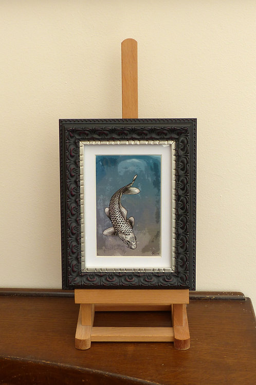 Koi Carp Ltd Edition II (Framed Print)
