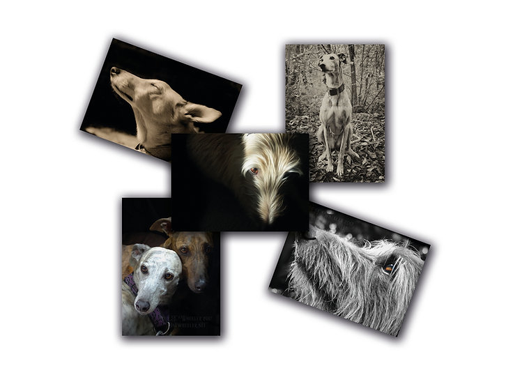 Lurchers 5 pack #1 (Greeting Cards)