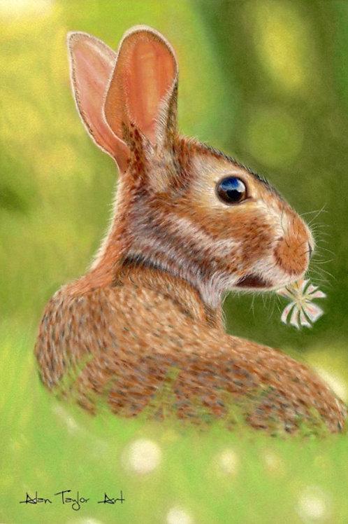 Rabbit Print (Mounted Print)