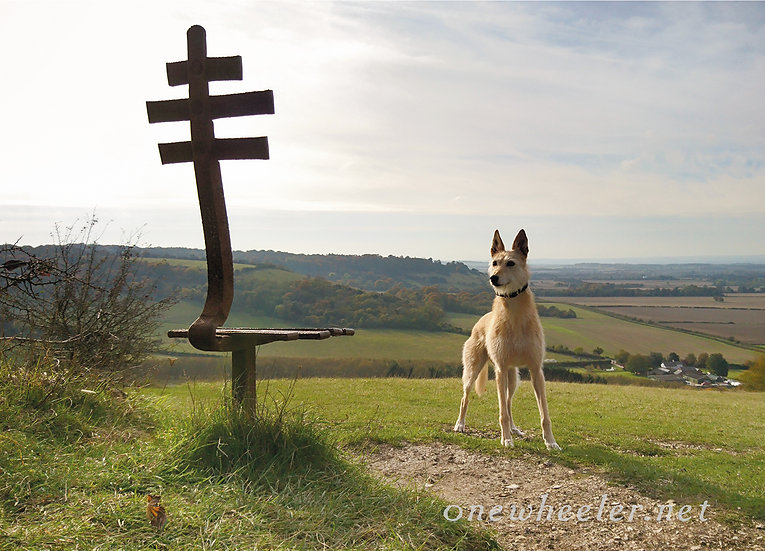 Chilly Chilterns (Greeting Card)