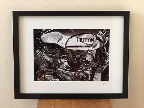 Triton (Framed Print)