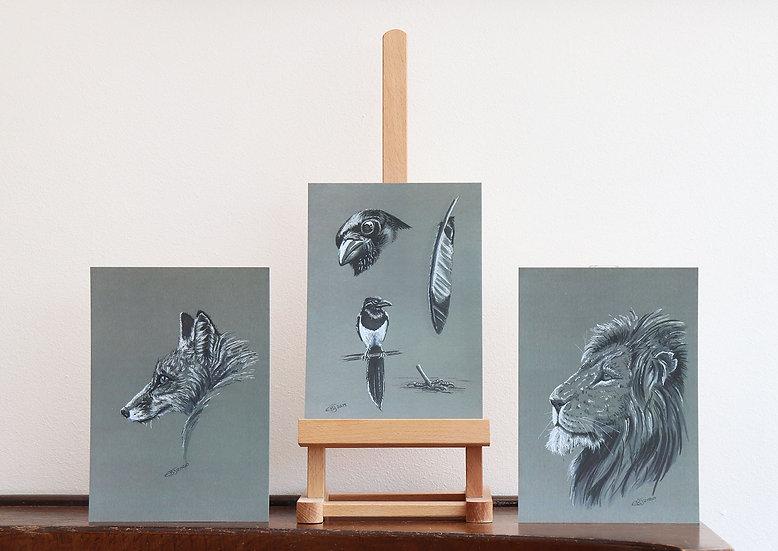 1 x Limited Edition Wildlife Print (A5) by Emma Judson