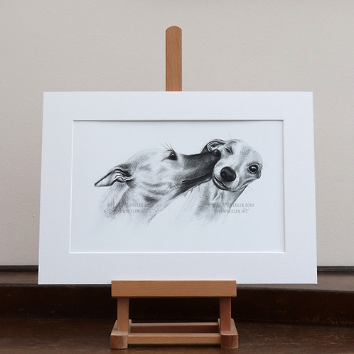Whippets mounted print (Large)