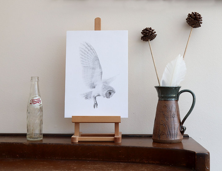 Owl Print On Canvas (unmounted, A4)