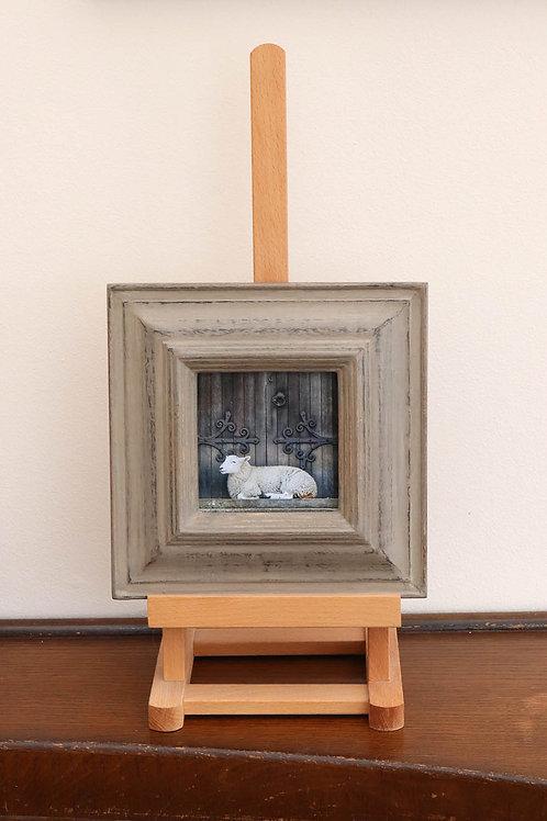 Sheep (Framed Print)