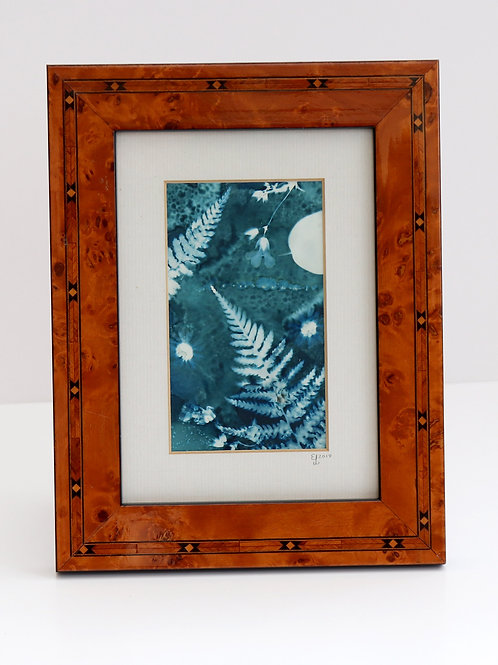 Botanical (Framed Wet Cyanotype)