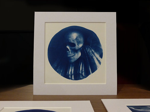 Skull Cyanotype Print