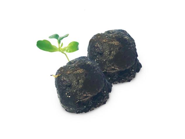 Seedbombs sind Kugeln aus Erde, Ton und Saatgut. Auf ein Fleckchen Erde geworfen entsteht daraus nach wenigen Wochen eine farbenfrohe Blumenpracht.