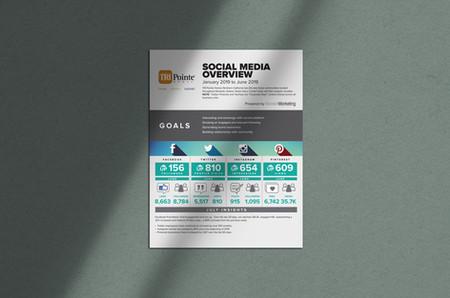Social-Media-Statistic-Flyer---TPH.jpg