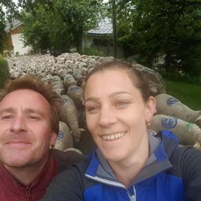 GAEC des Eulets - Éleveurs d'Agneau