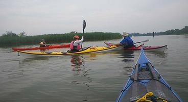 kayak_strokes.png