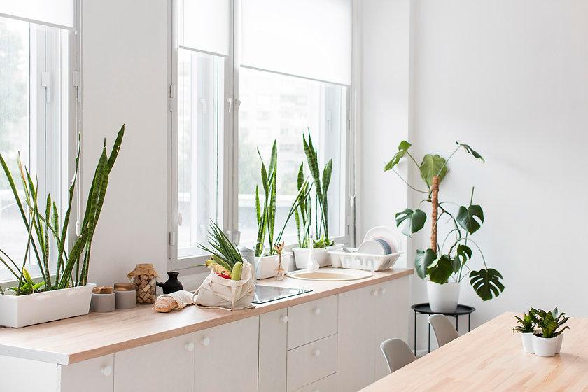 stylish-minimalistic-kitchen-with-plants