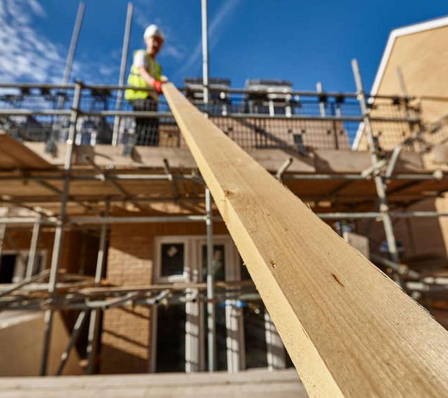 Building.carpenter.jpg
