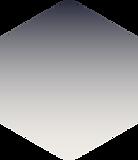 Hexagon for Website_3.png